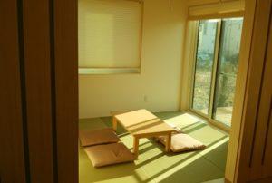 宿泊体験棟に採用されていた半畳ワカクサ(緑色)